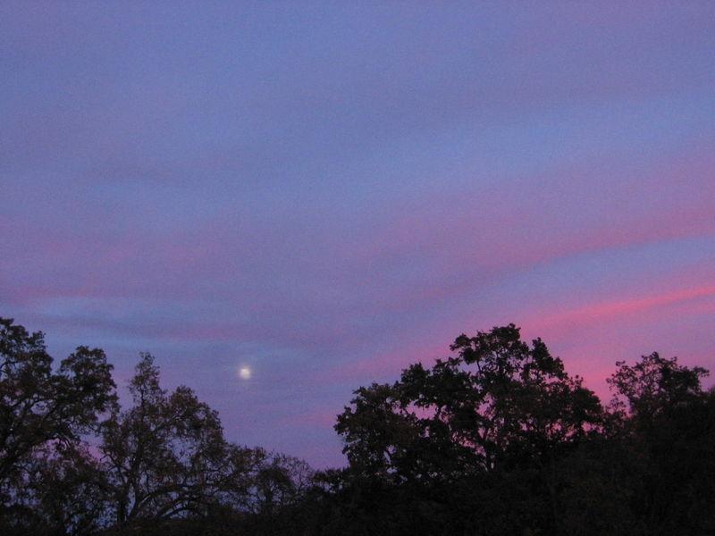 December_Sunsets_0001