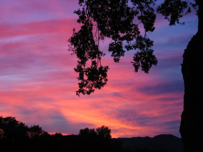 December_Sunsets_0004