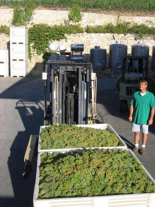 Harvest_2009_begins_0001