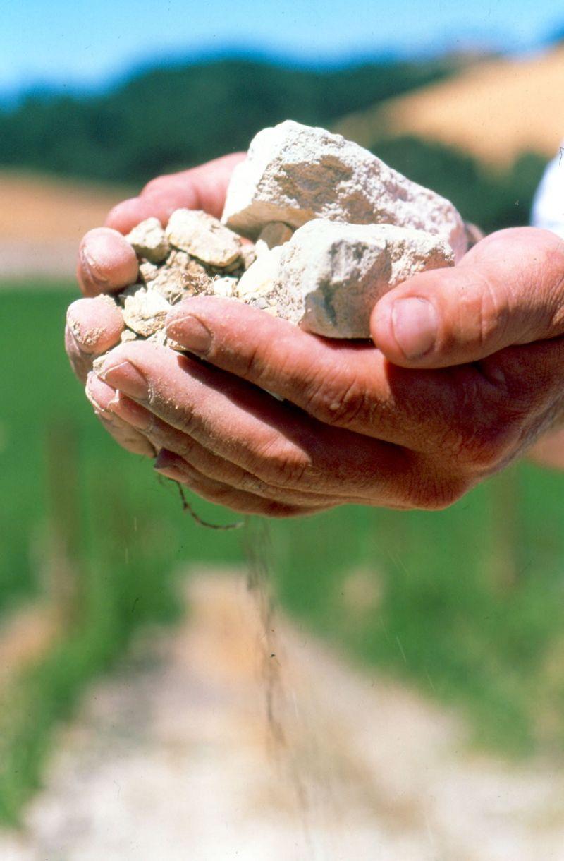 Rocks in Hands Large