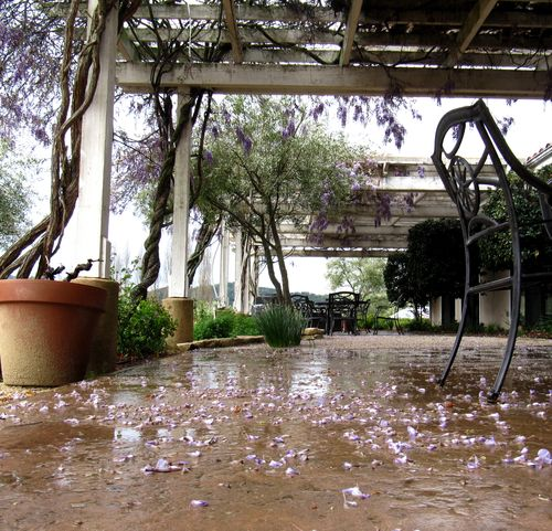 Rainy Patio