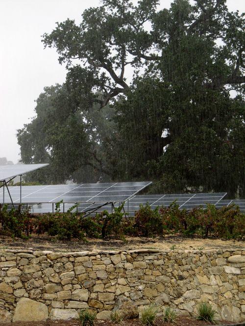 Rain October 2012