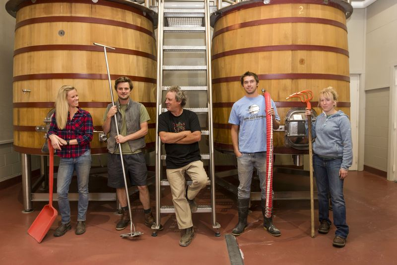Winemaker Gothic - 2013 Harvest Team