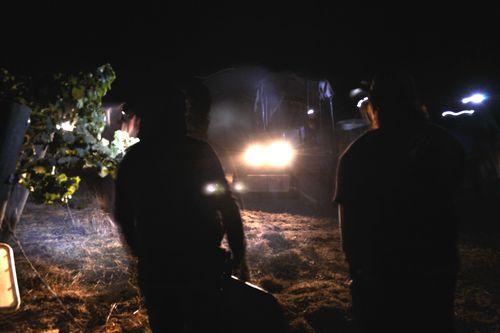 Night Harvest headlights
