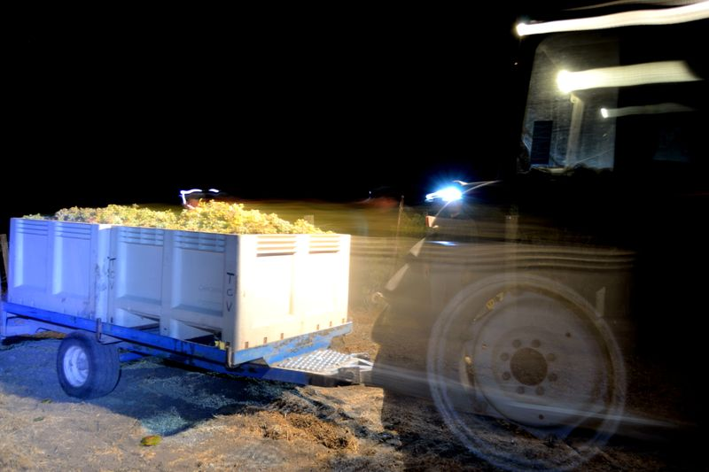 Night Harvest tractor moving