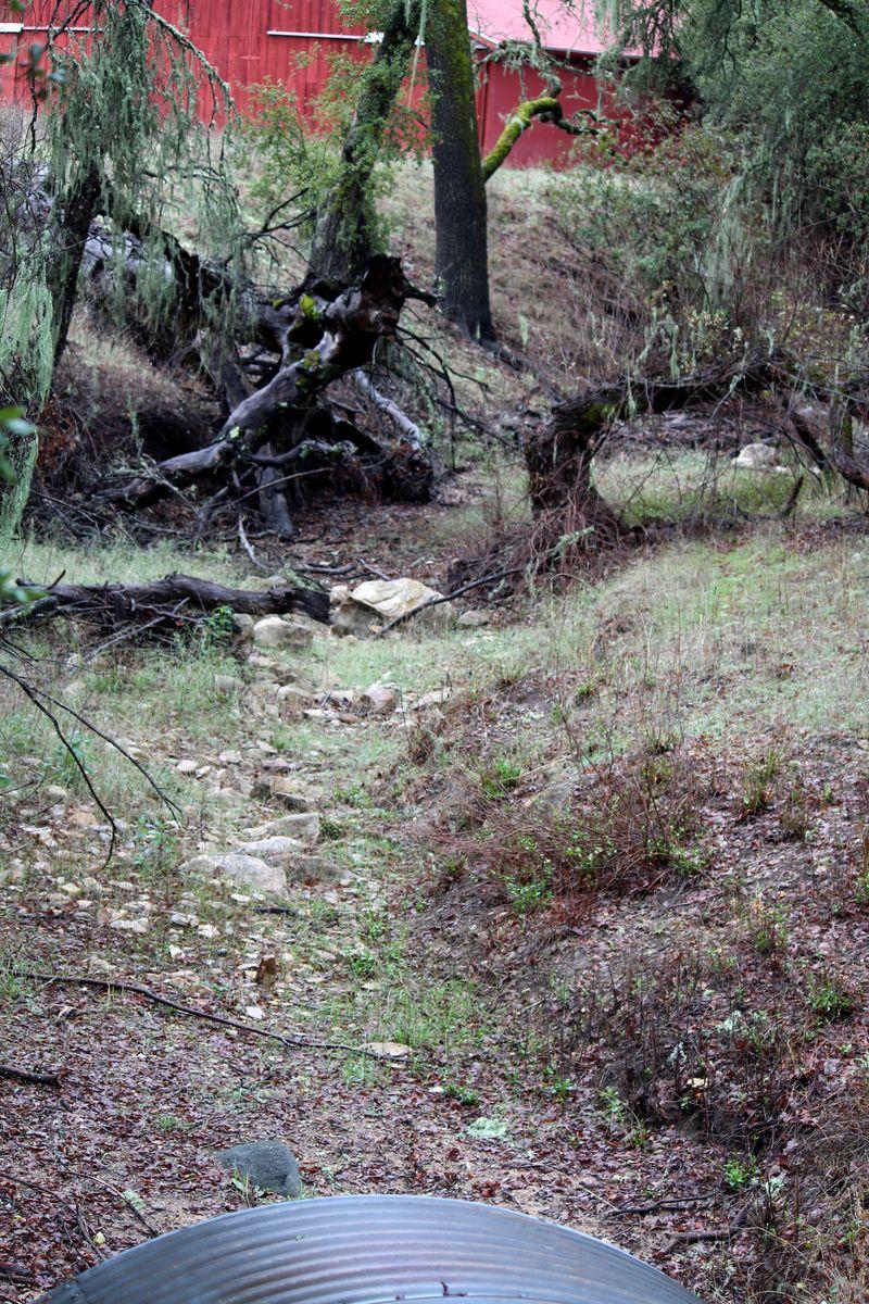 Mar 02 View of Las Tablas Creek