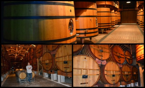 PicMonkey Collage_Foudre Room