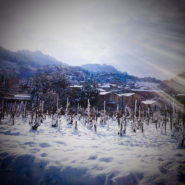 Snow in Gigondas
