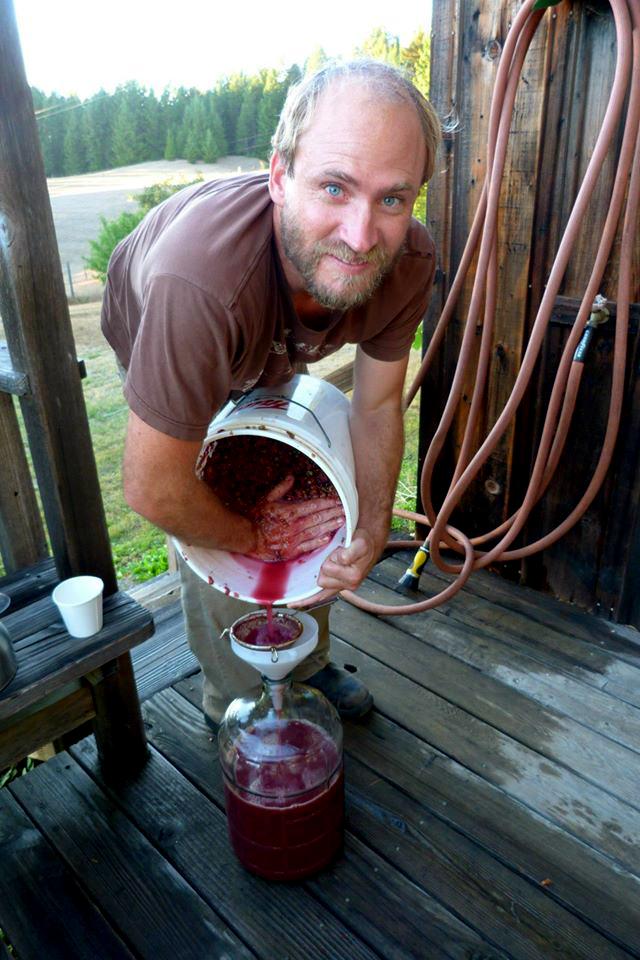 Winemaking Forrest