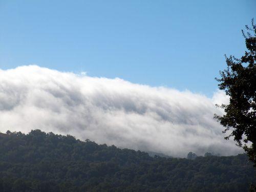 Changing seasons fog bank