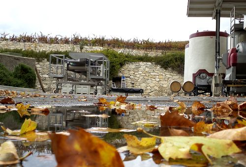 Winery and puddles