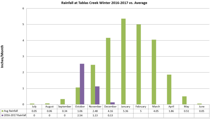 Rainfall Winter 2016-2017