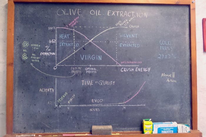 Olive Oil Process