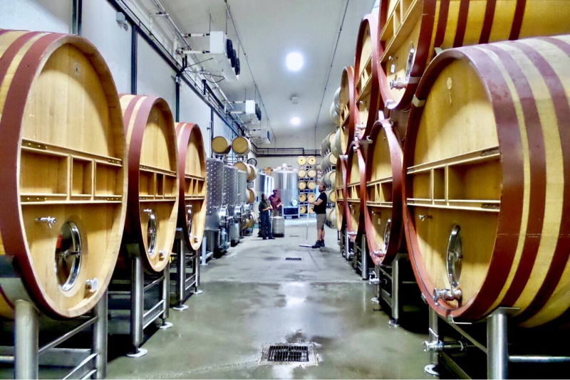 Clean cellar with new foudres August 2018