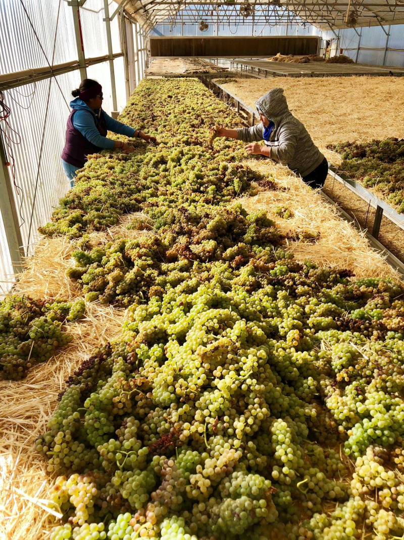 Roussanne on the straw