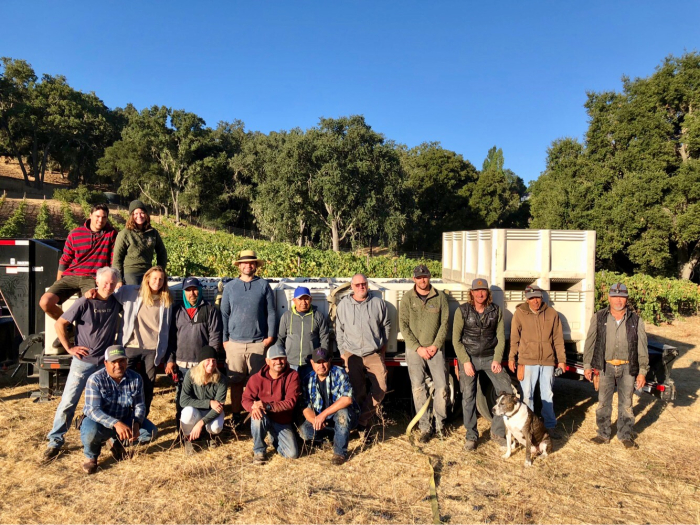 Full Circle Pinot harvest - Team photo