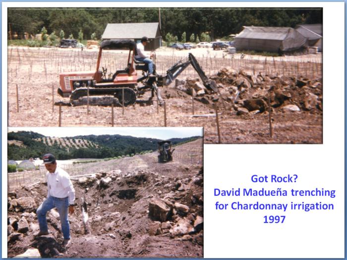 David Maduena