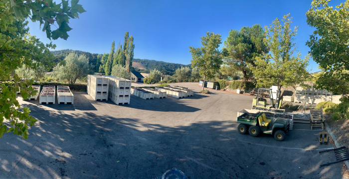 Mid-Sept Harvest - Parking Lot Panorama