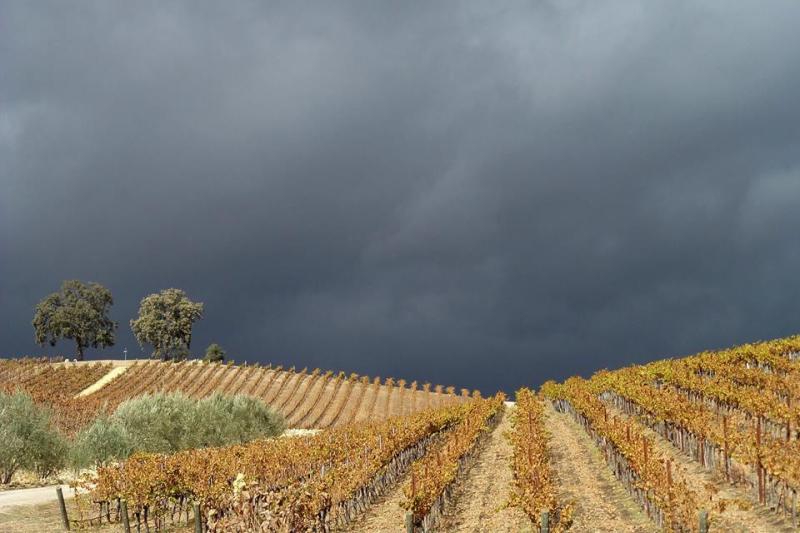 Dark clouds over Tablas Creek Nov 2015