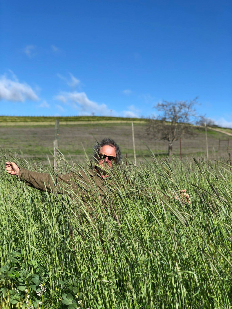 Neil lost in the cover crop April 2019