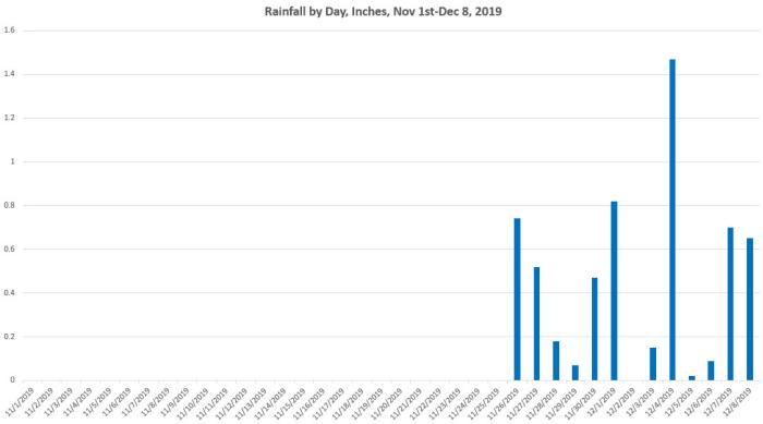 Rainfall Graph
