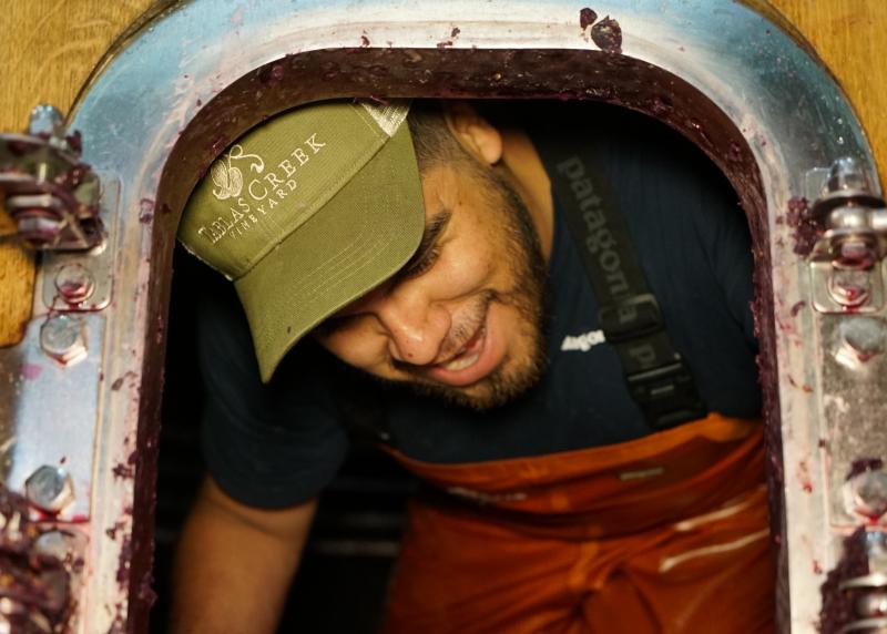 Wine Harvest Intern Tank Hole Adrian