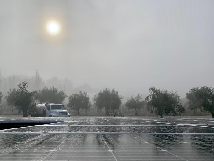 Solar panels vineyard truck and fog
