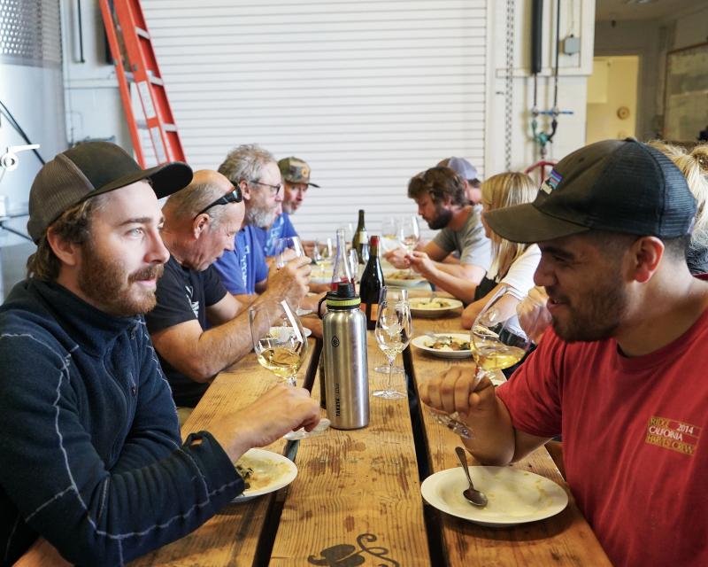 Wine Harvest Interns Staredown