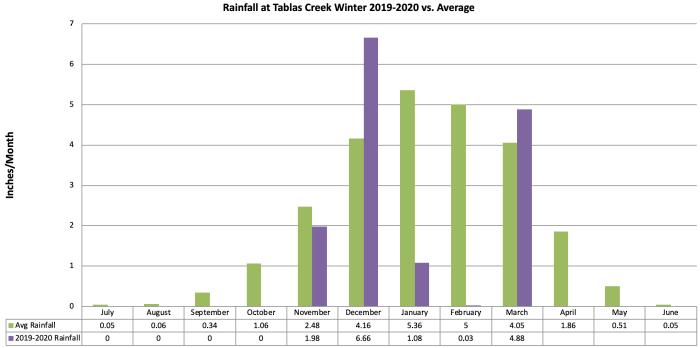 Winter 2019-20 Rainfall by Month