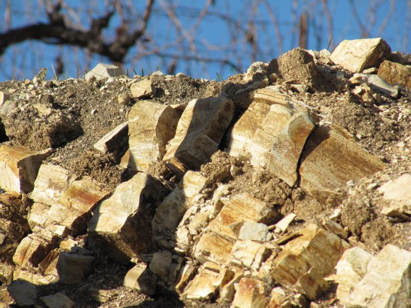Tablas Creek - Calcareous Rocks and Vines
