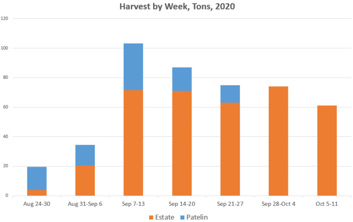 Harvest Tons By Week 2020