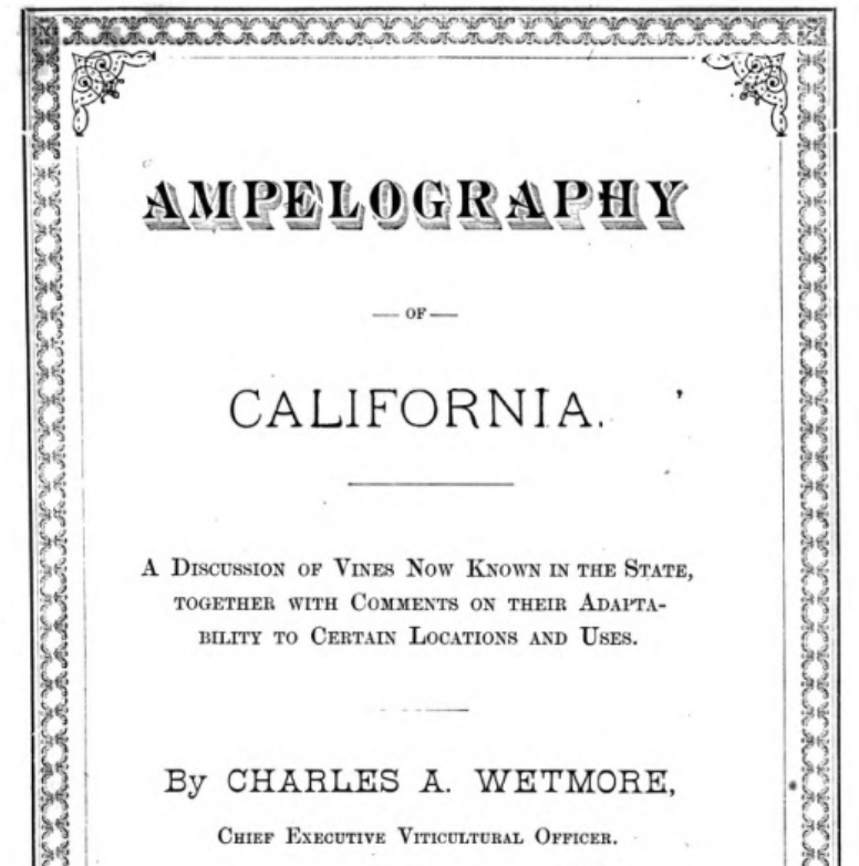 Ampelography Cover Page