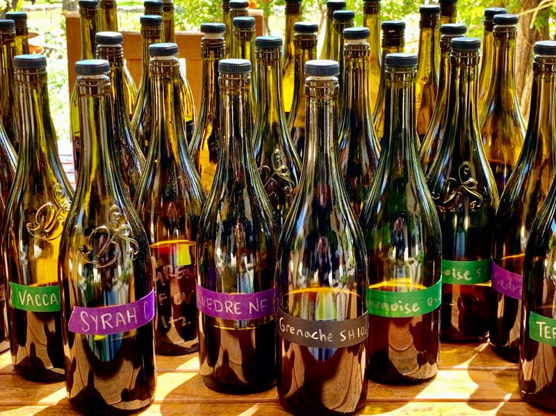 Blending bottles on patio - 2020 reds