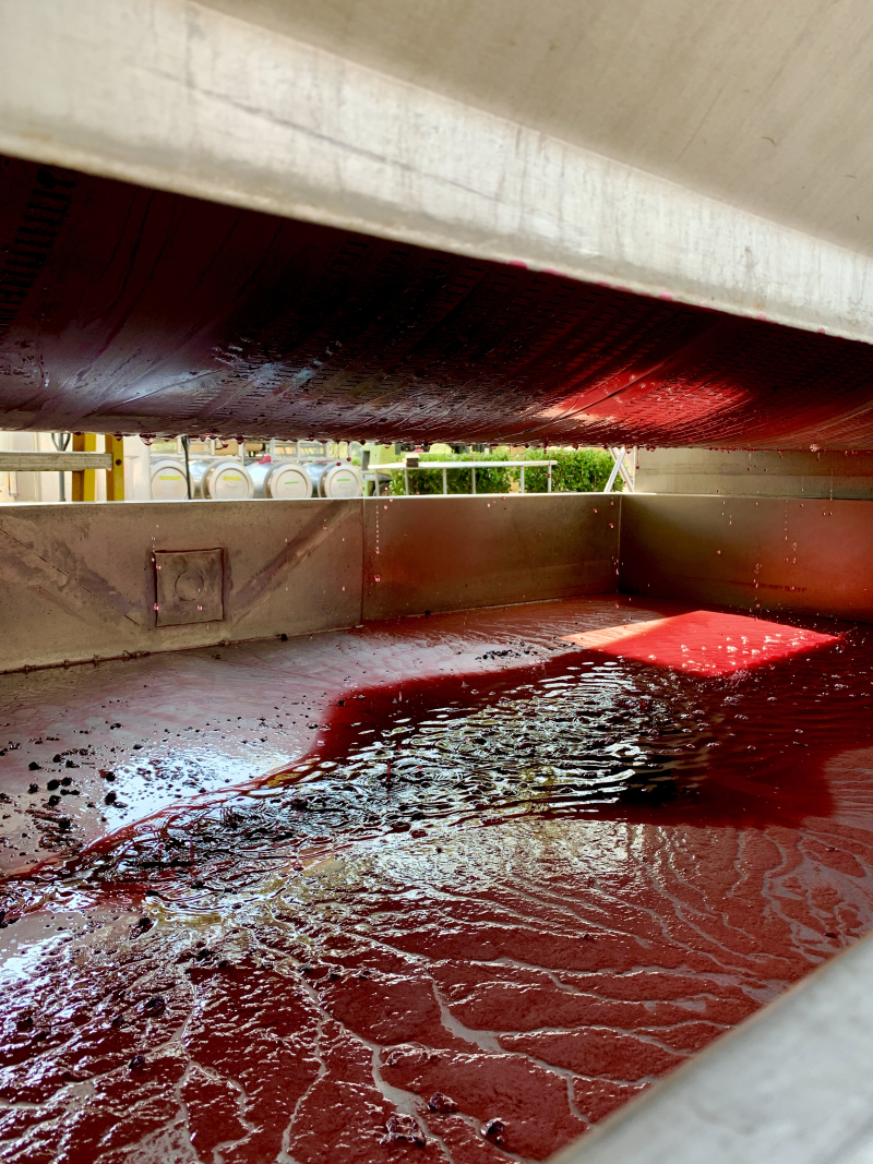 Mourverdre in the press