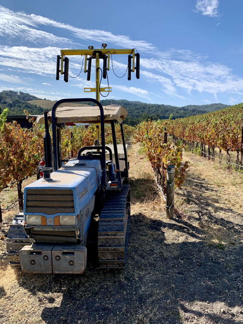 Tractor in front of colorful Mourvedre