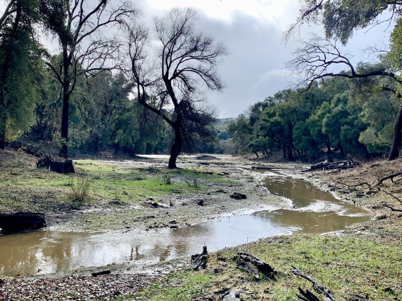 Las Tablas Creek