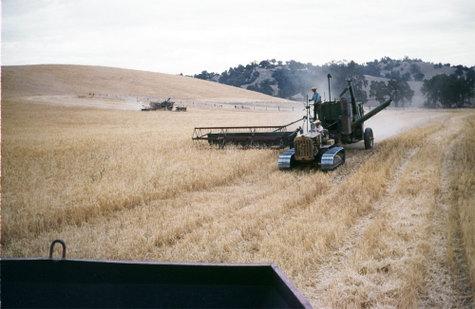 Barleyharvestlate50sb