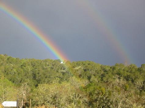 Tom_rainbow_2